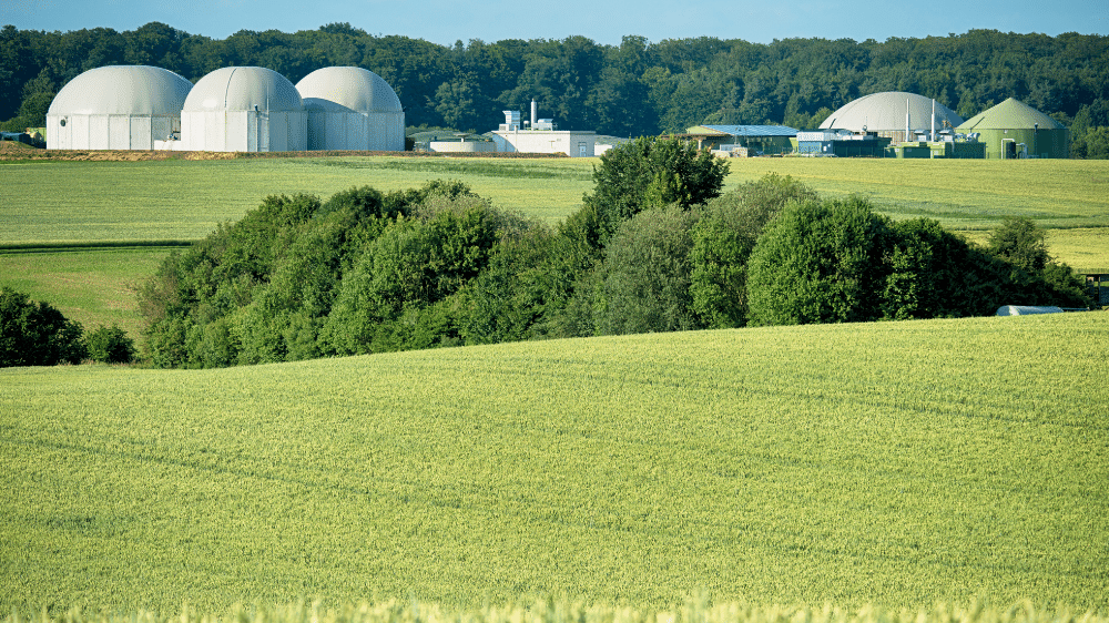 Sustainable bioenergy and its crucial role in driving the green transition in industries